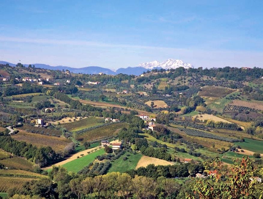 Ferzo Abruzzo Teate